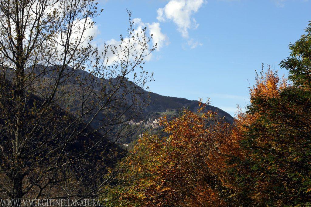 Vista lucchio autunno