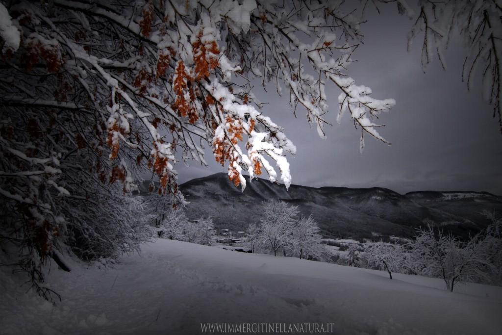 Vista invernale dall'oppio